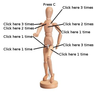 3d Human Anatomy Model General Discussion Forum