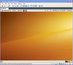 Ubuntu 9.10 Karmic Koala and VMWare Workstation 7.